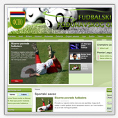 Website example 2